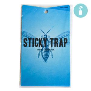 Sticky Traps